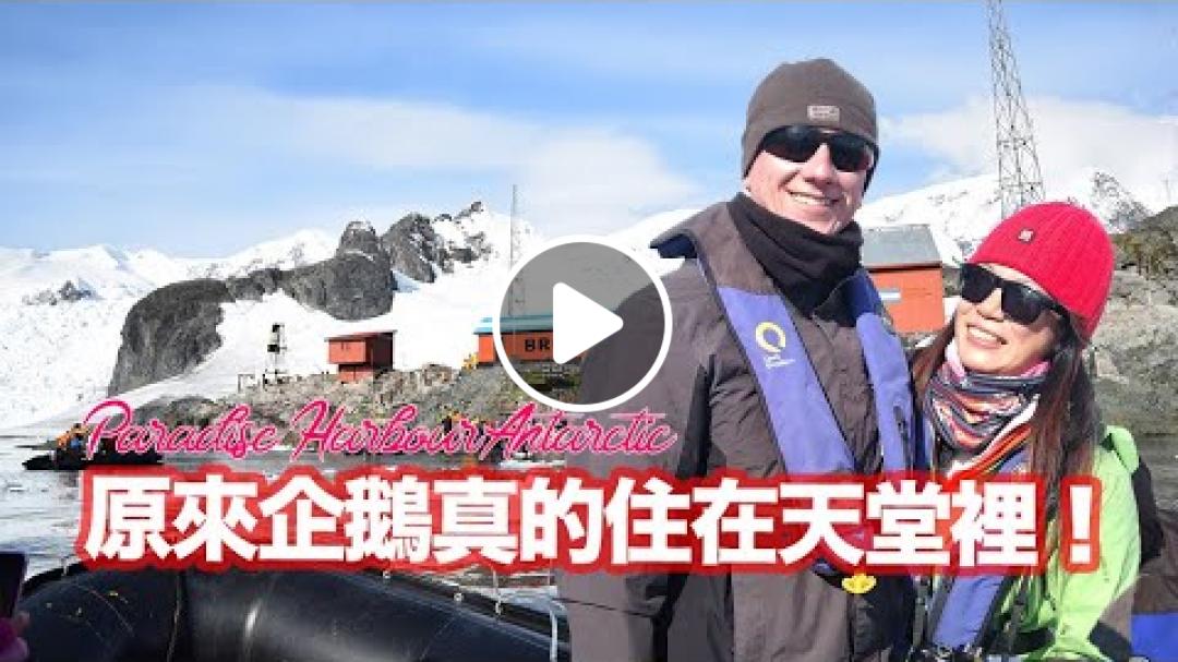 原來企鵝真的住在天堂裡!  波希去南極#3   Paradise Harbour Antarctica   波希太太 MStravel